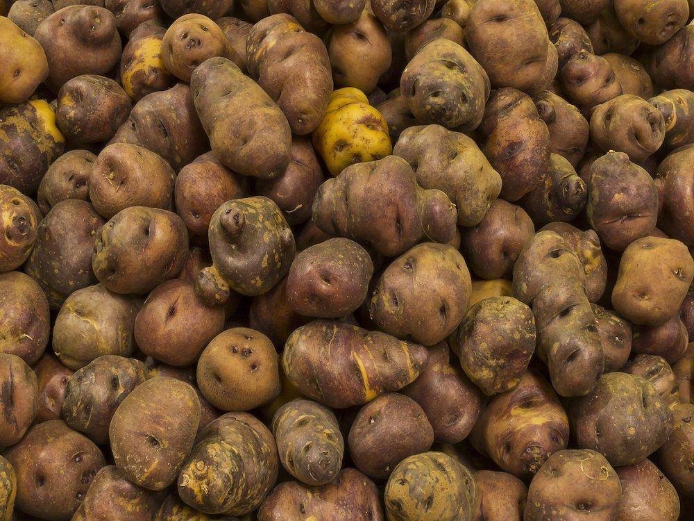 Las papas canarias son un alimento sencillo y delicioso