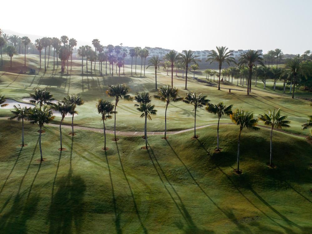 Abama Resort IESE best resorts in Spain book