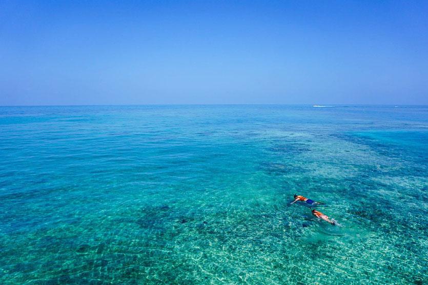 advice for snorkeling Tenerife near Abama Resort