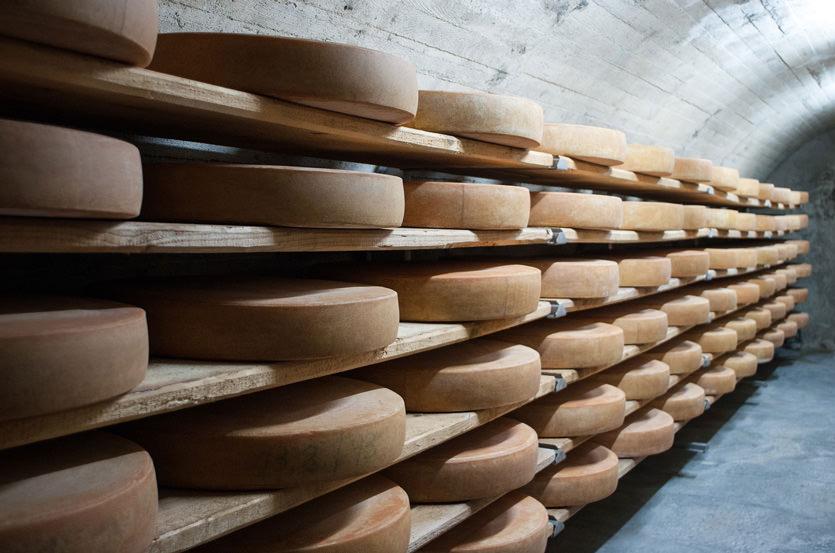 Pajonales, el queso canario más delicioso