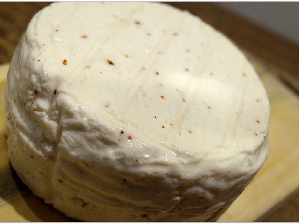 learn about fresh Tenerife cheese